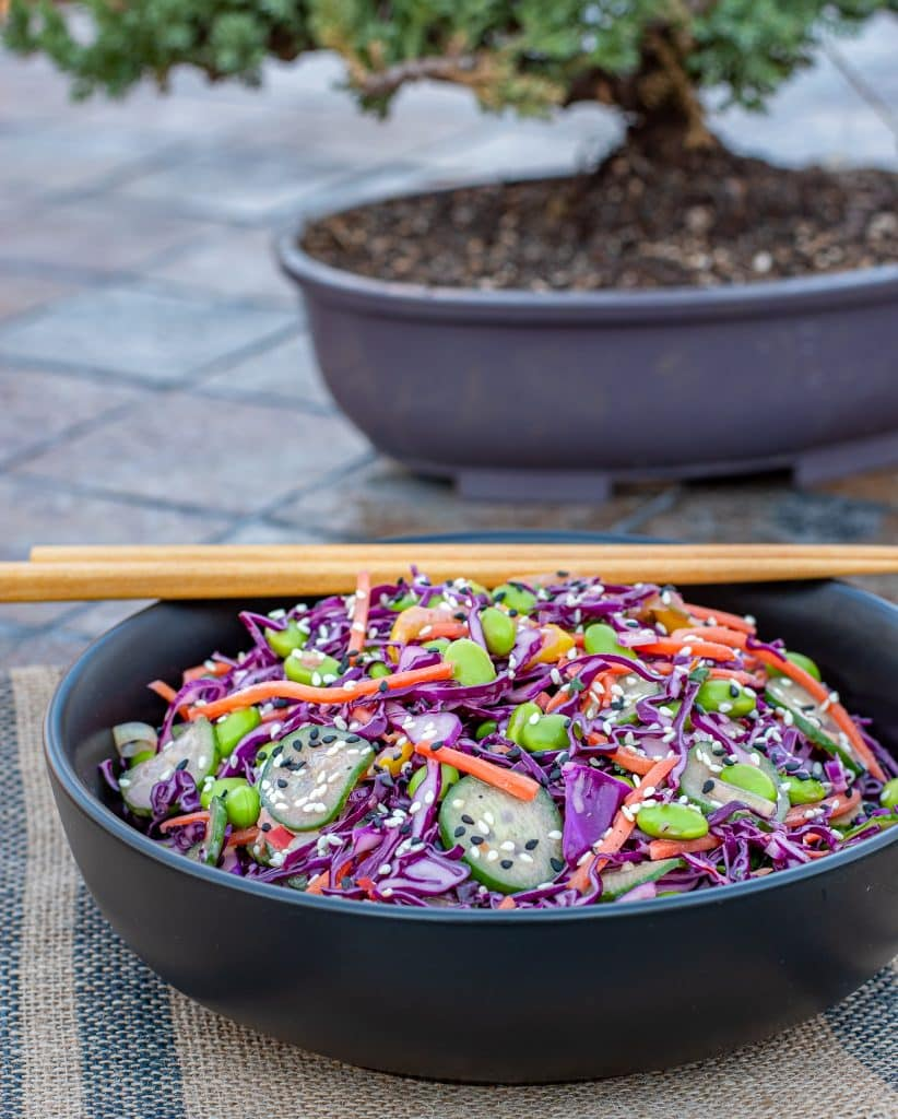 asian red cabbage slaw in a bowl with a bonsai tree in the background